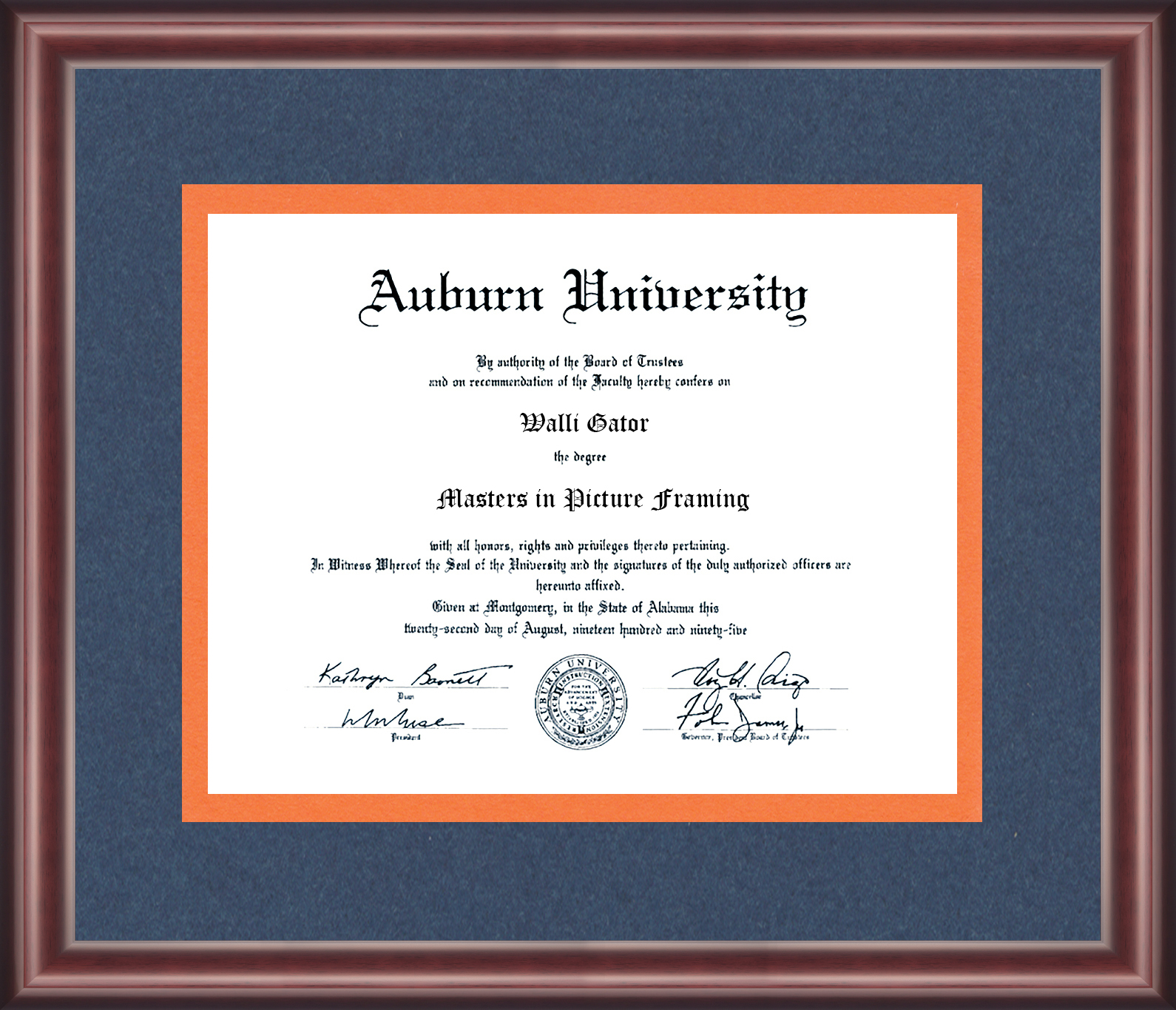 Diploma and University Frames - Talking Walls