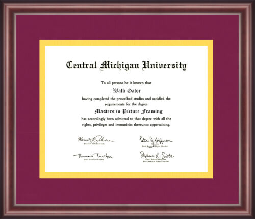 Central Michigan University Diploma Frame