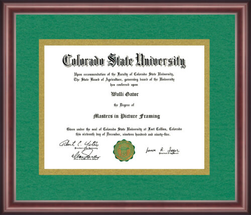Colorado State University Diploma Frame
