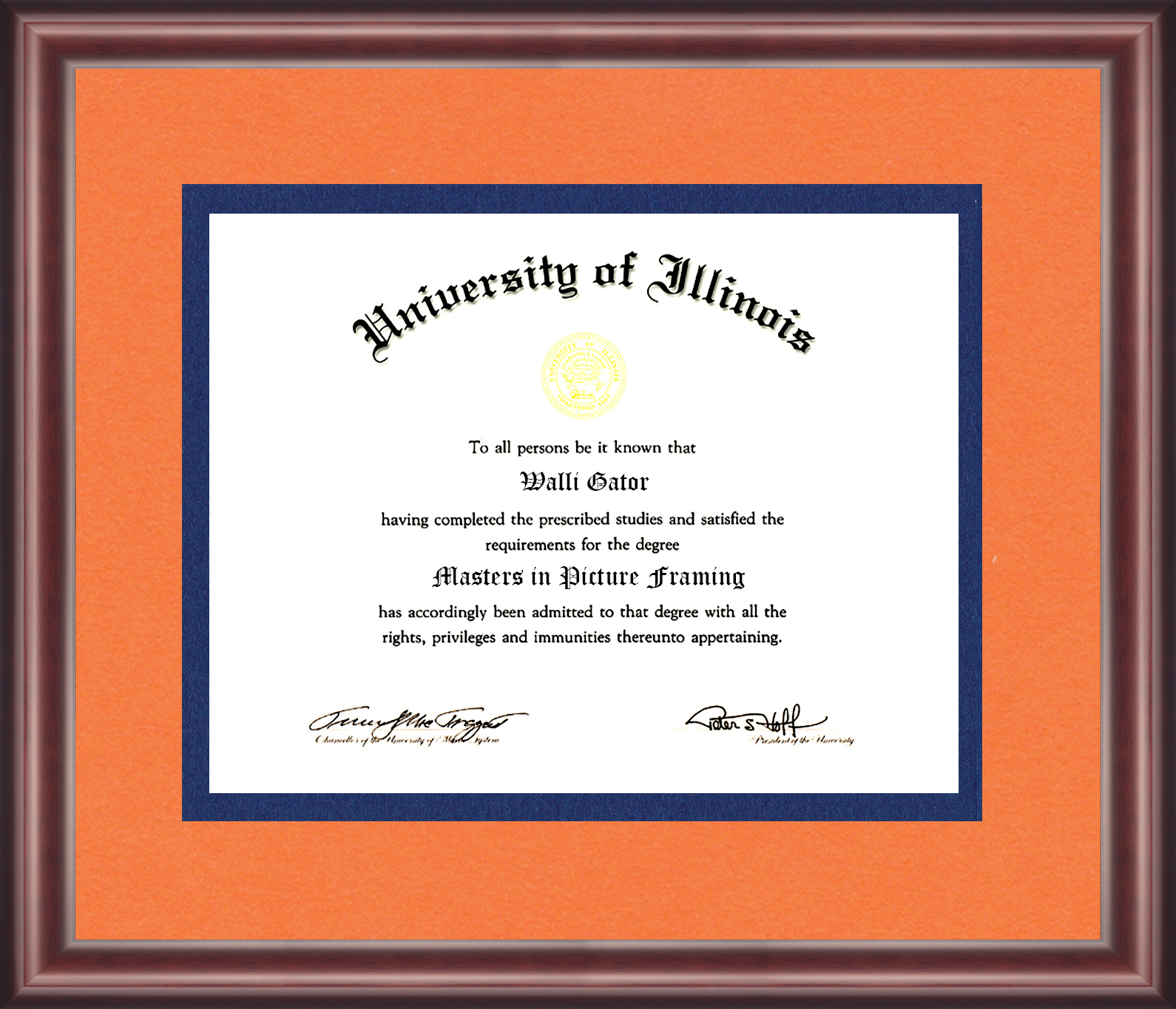 University Of Illinois Diploma Frame - Talking Walls