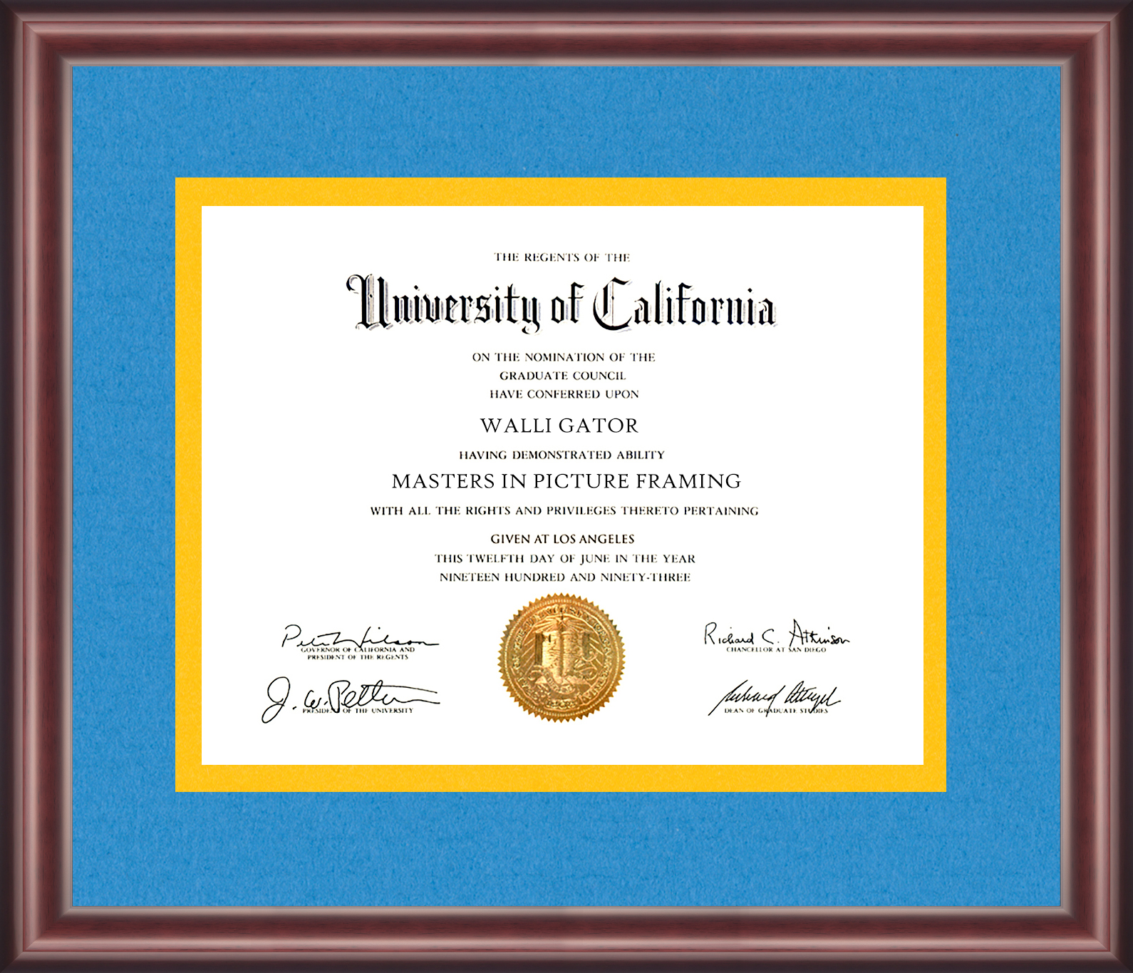 University Of California Los Angeles Ucla Diploma Frame
