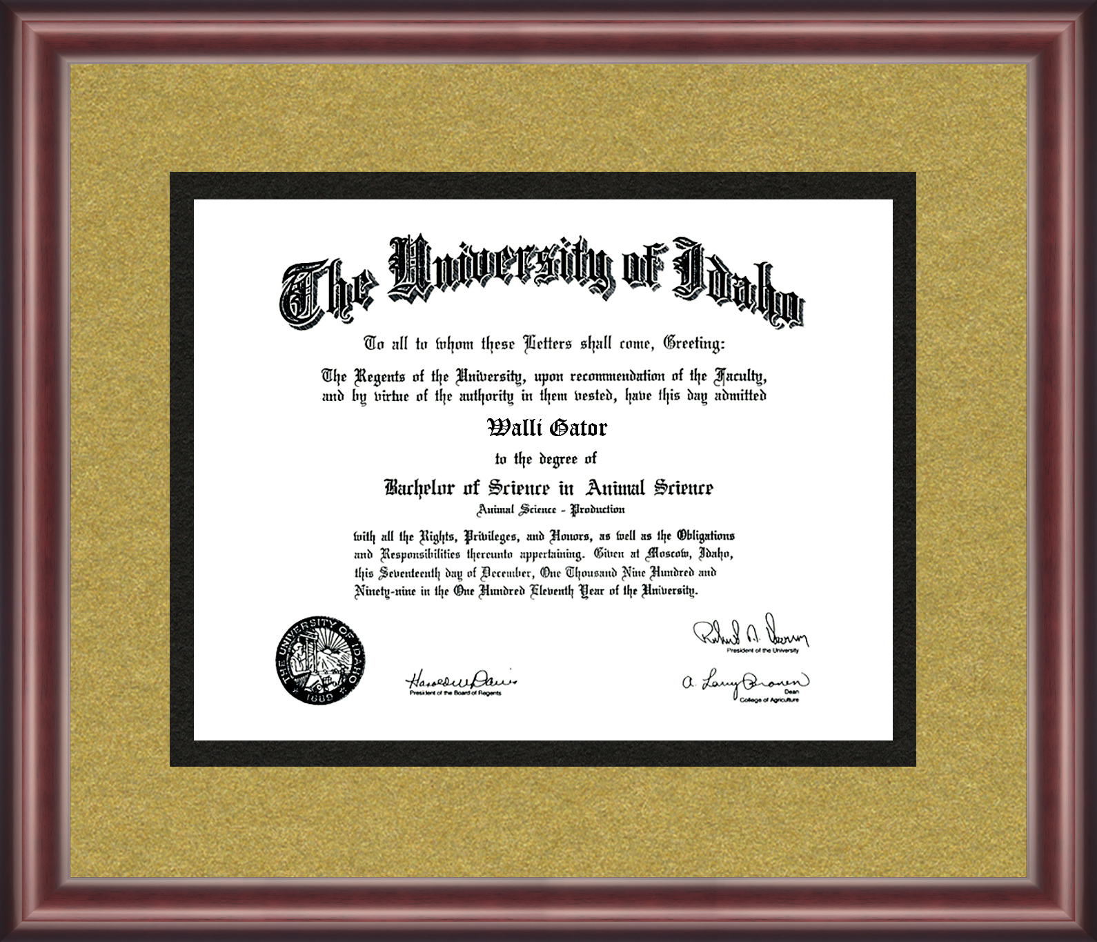 University of Idaho Diploma Frame - Talking Walls