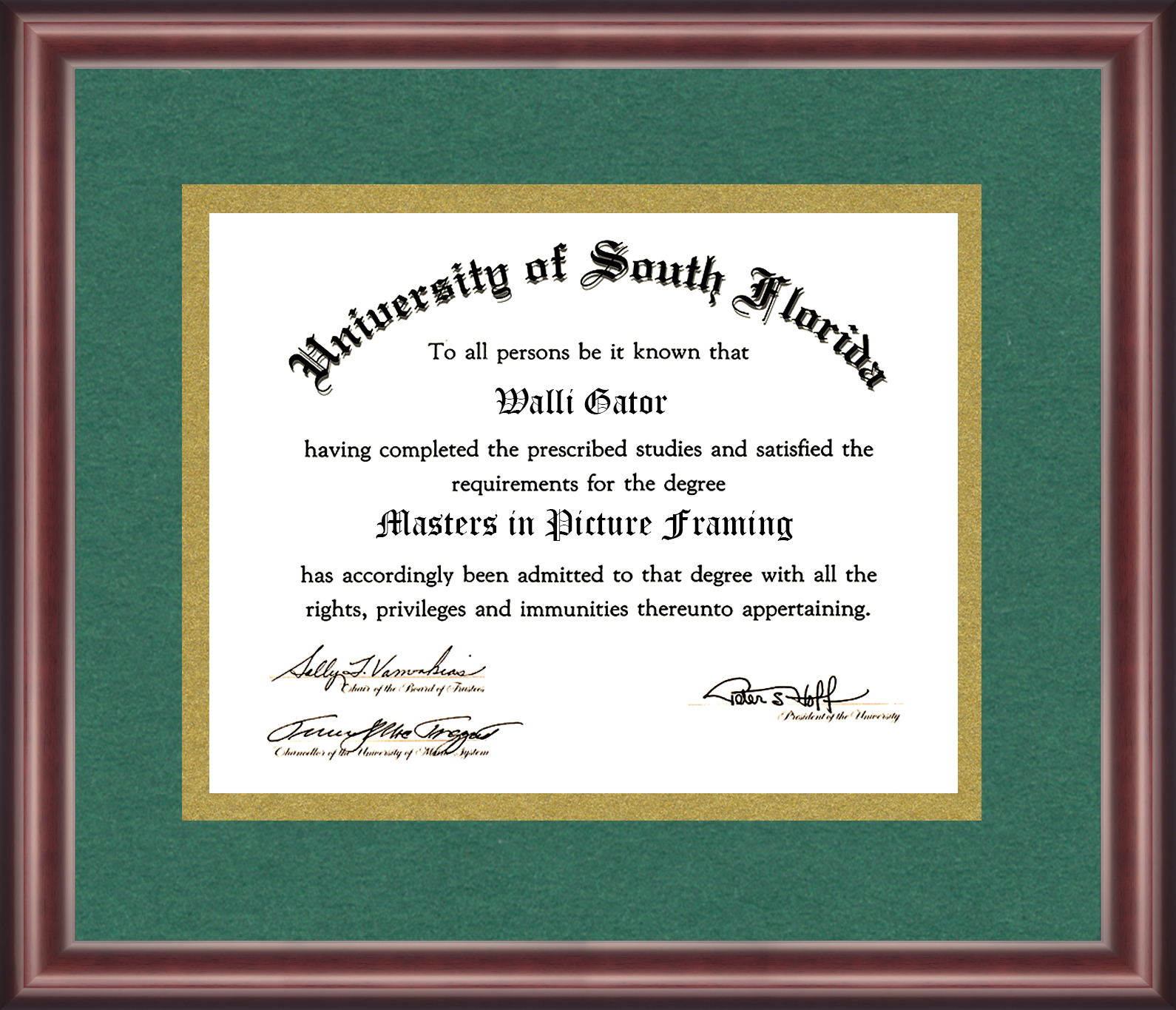 University of South Florida Diploma Frame - Talking Walls