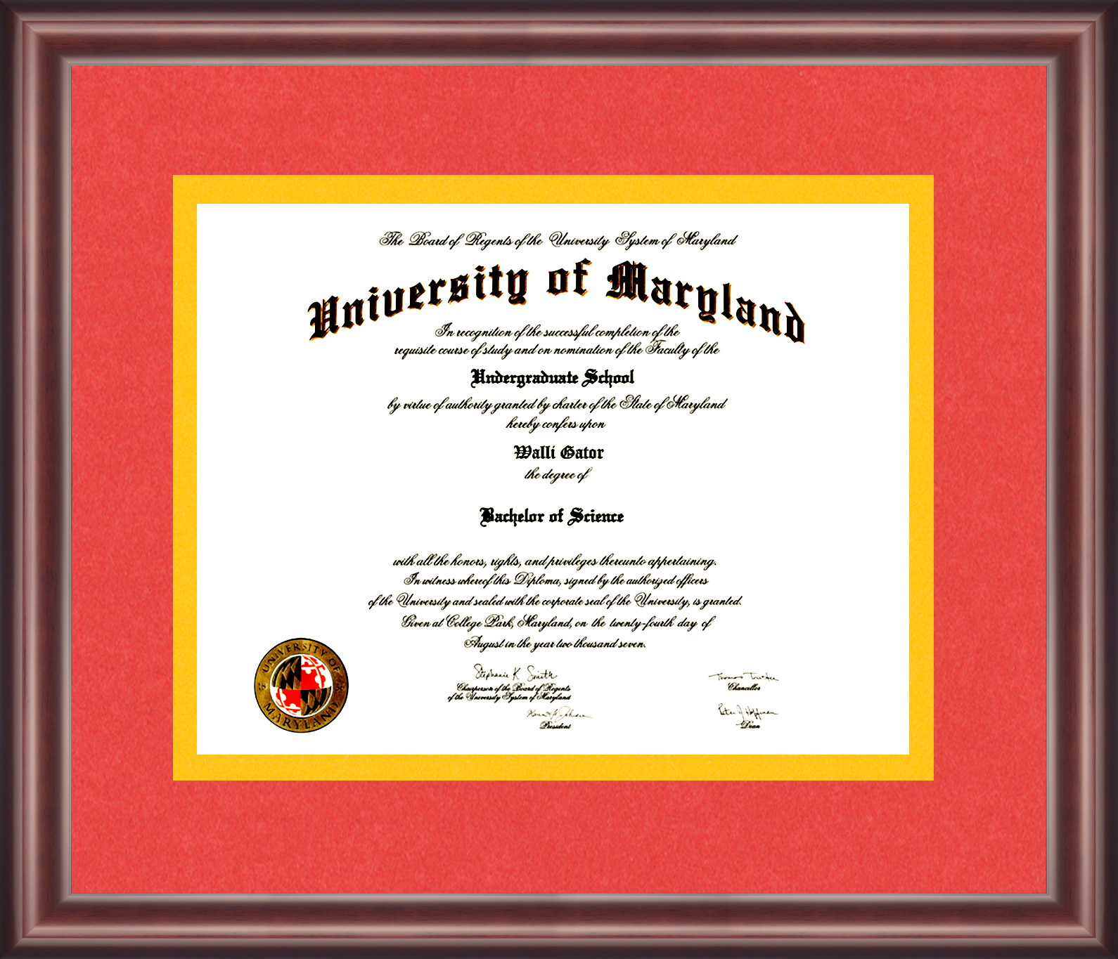 University of Maryland Diploma Frame - Talking Walls